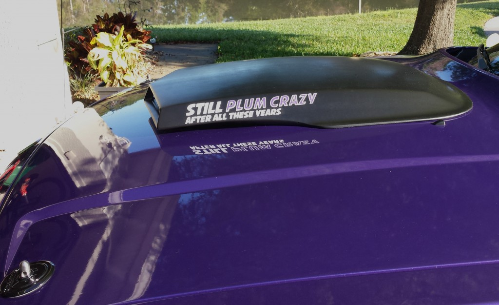 still-plum-crazy